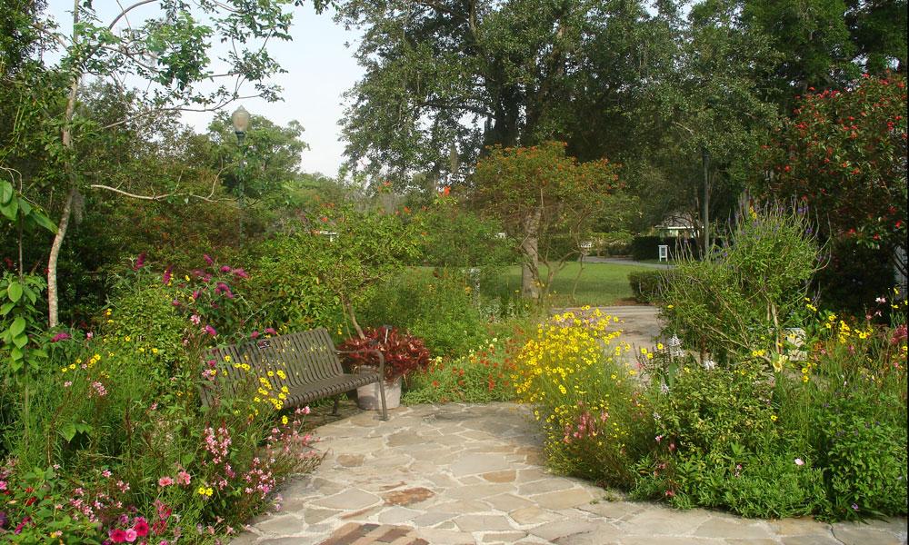 Leu gardens today39s orlando for Butterfly garden orlando