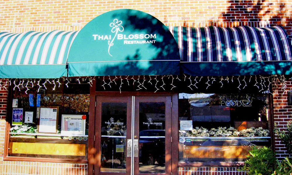 Thai blossom today 39 s orlando - Best restaurants in winter garden ...