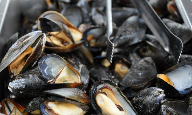 There's more than just mussels being served at The Taste of West Orange, but there are also mussels.