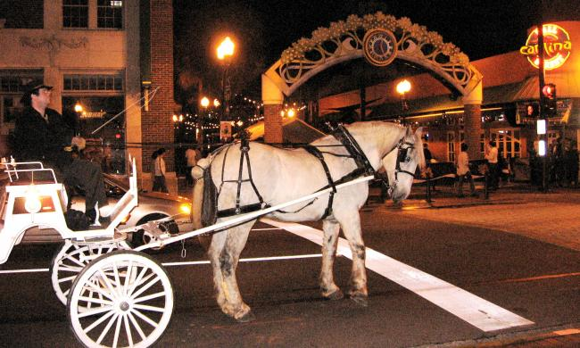 A Hitch 'N Time offers carriage rides through downtown Orlando.