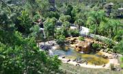 Gatorland's zip line takes you more than seven stories high and at speeds up to 30 mph.