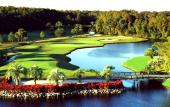 Disney's Palm Golf Course features lakes, palm trees and sloping greens.